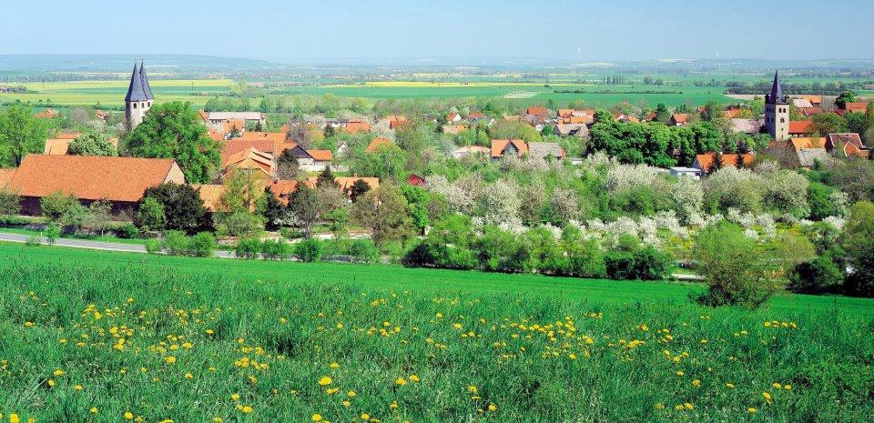 Landschaft bei Drübeck